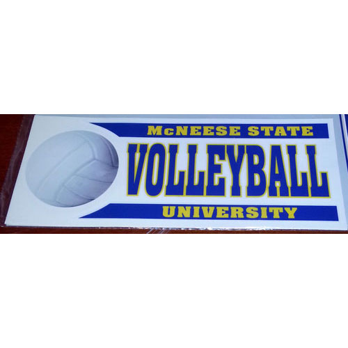 Cover Image For DECAL VOLLEYBALL BAR